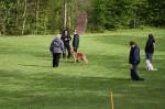 1. Obedience-Prüfung der OG Attendorn